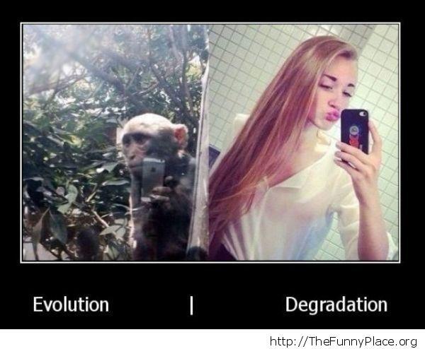 monkeys do it to