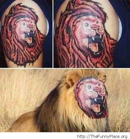 Fail lion