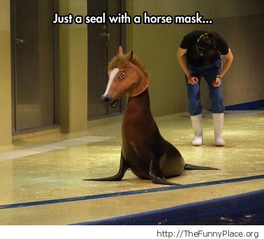 I am a horse
