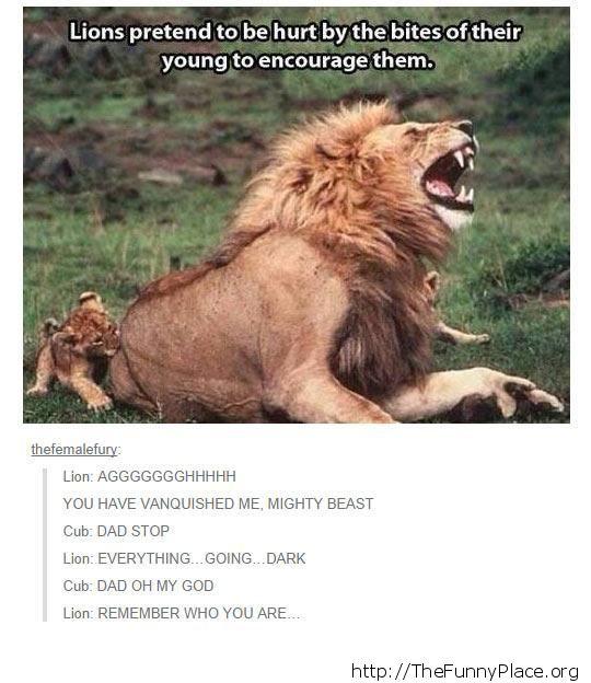 Mini lion bite