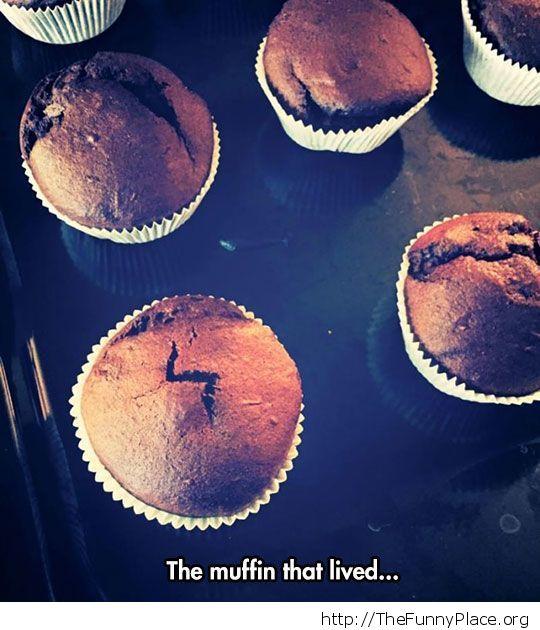 Chosen Muffin