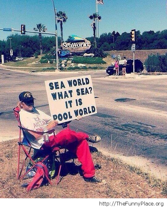 Boycotting SeaWorld