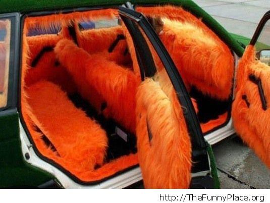 Fuzzy car