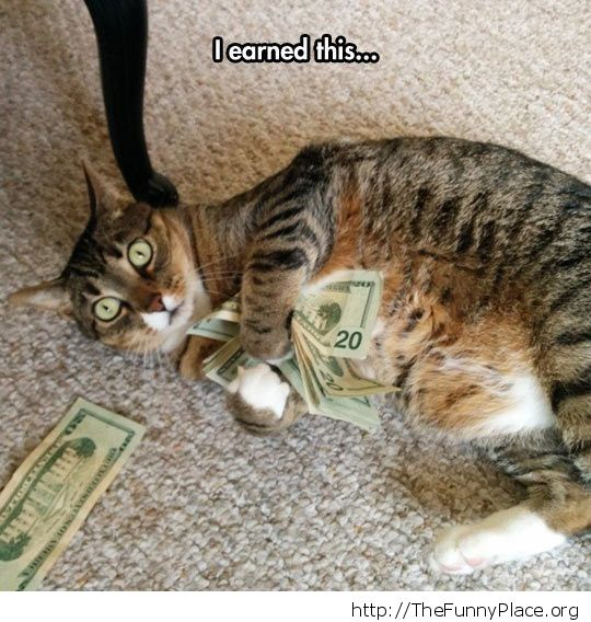 I earned this money