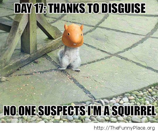Squirrel mask