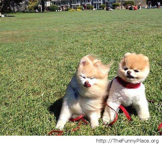 A little windy