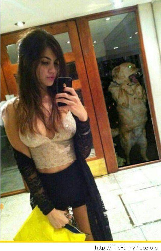Dog bomb