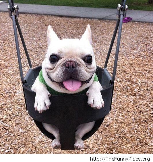 Plase swing me