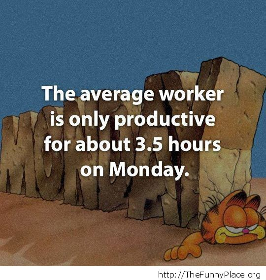 Average worker
