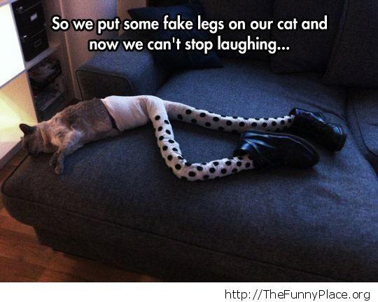 Fake legs