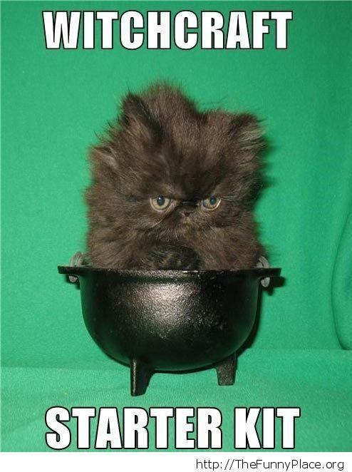 Small cauldron