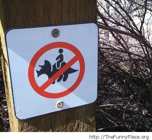No riding dinosaurus