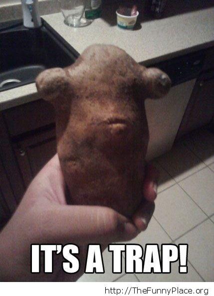 Strange potato