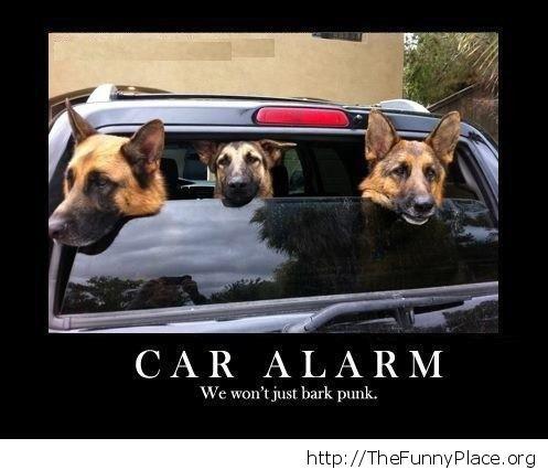 Dog alarm