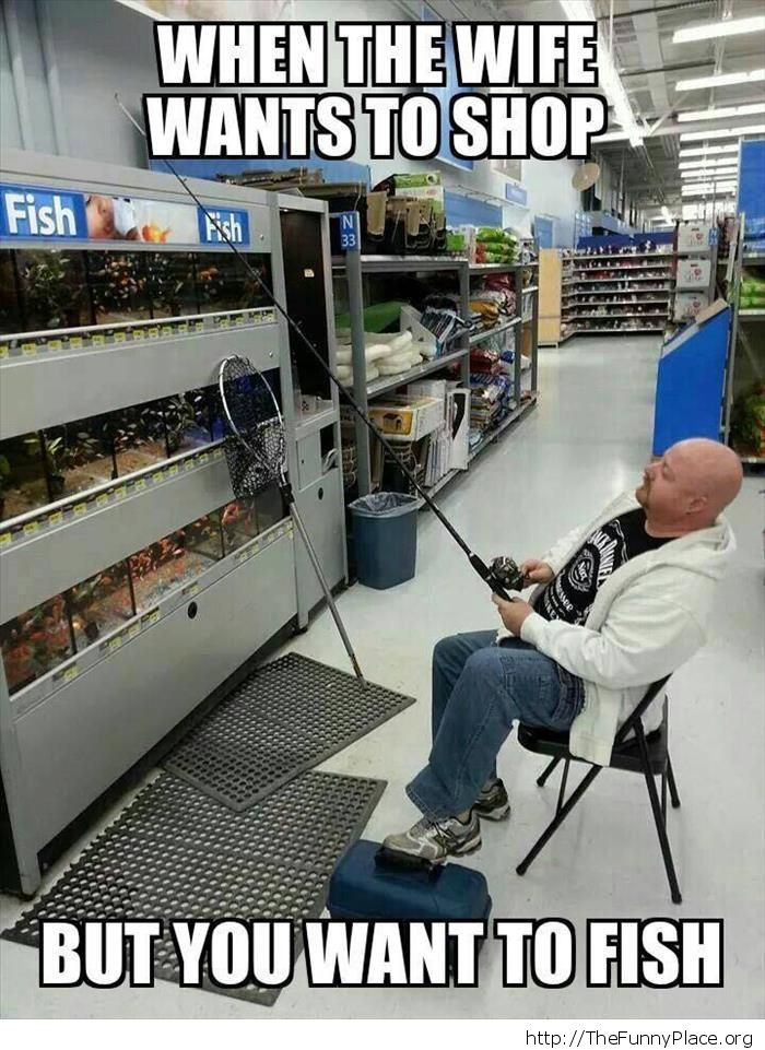 I want to fish