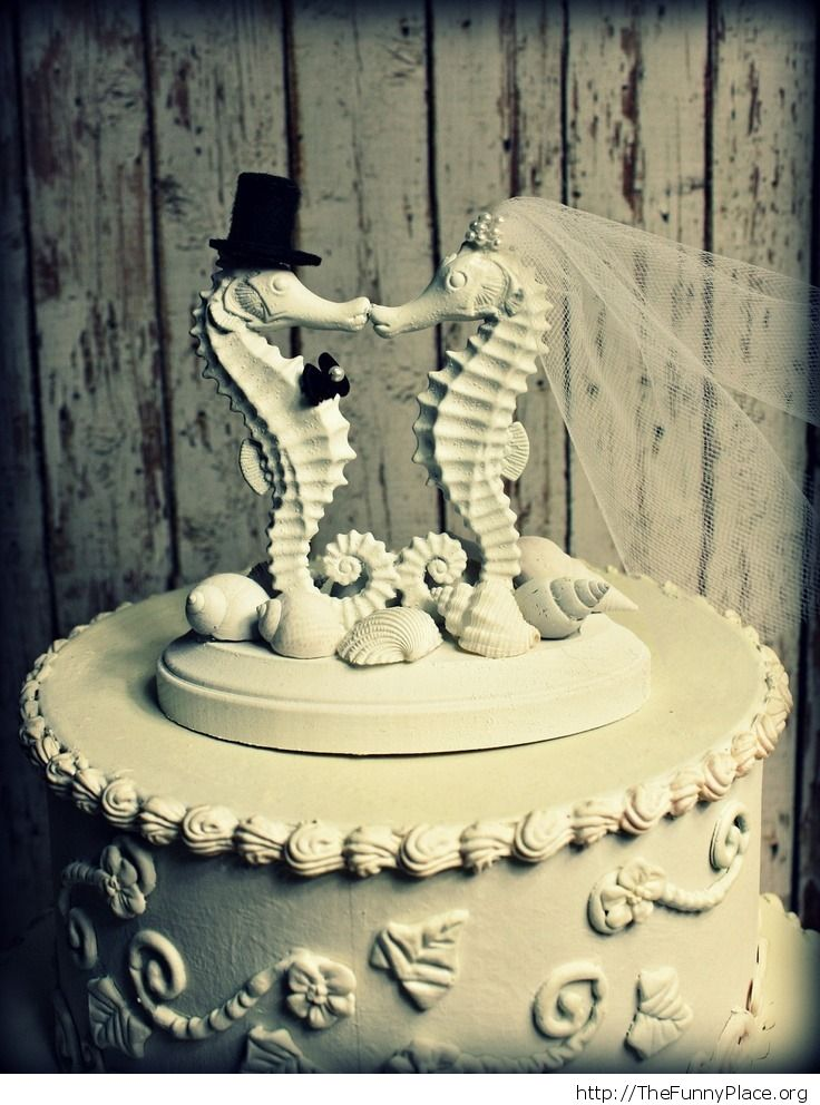 Top 10 wedding cake toppers – TheFunnyPlace