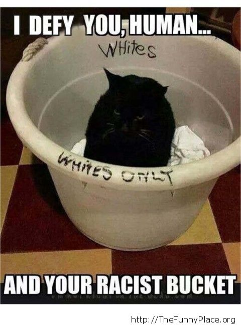Your racist bucket
