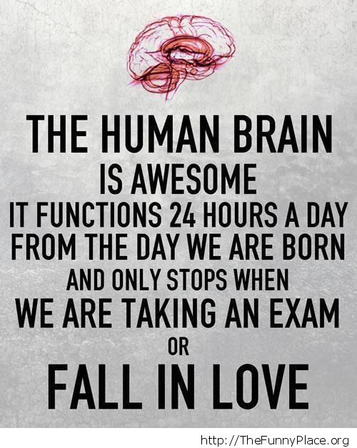 Awesome human brain