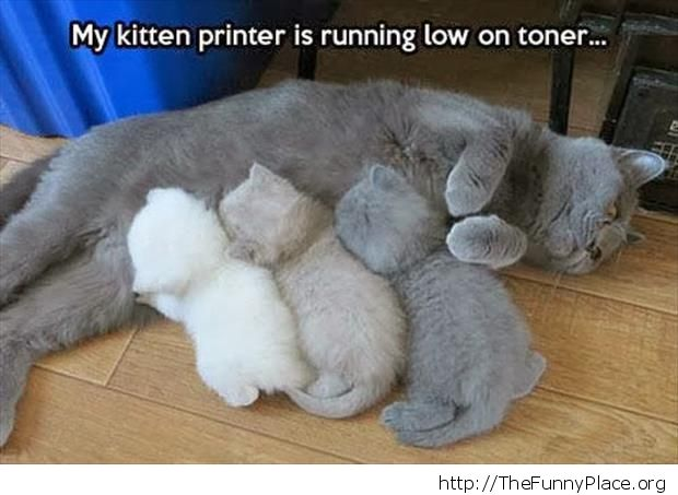 Low on toner printer