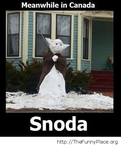Snoda