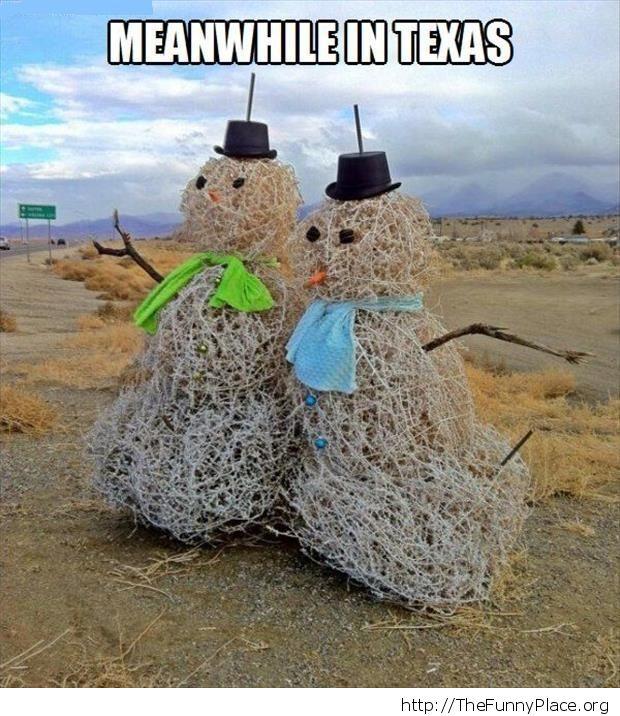 Texas snowmen