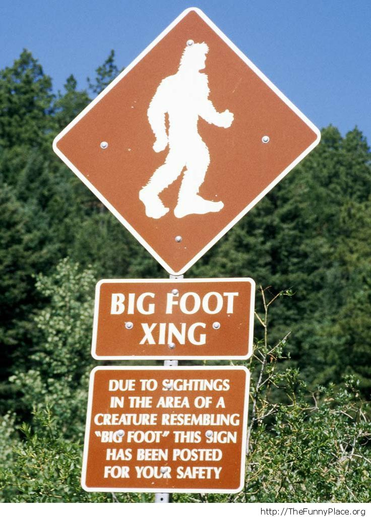 Big foot area