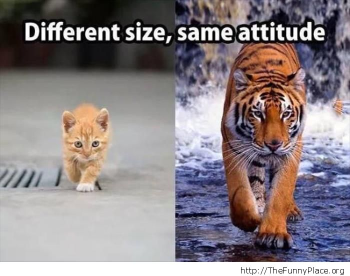 Different size