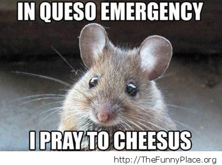 Praying to cheesus